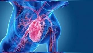 Kalp yetmezliği teşhisi, tedavisi ve evreleri