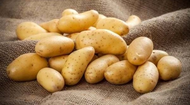 Leziz mi leziz patates püresi tarifi